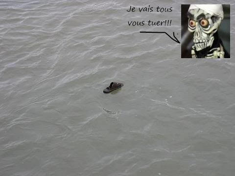 photo mort ben laden en mer